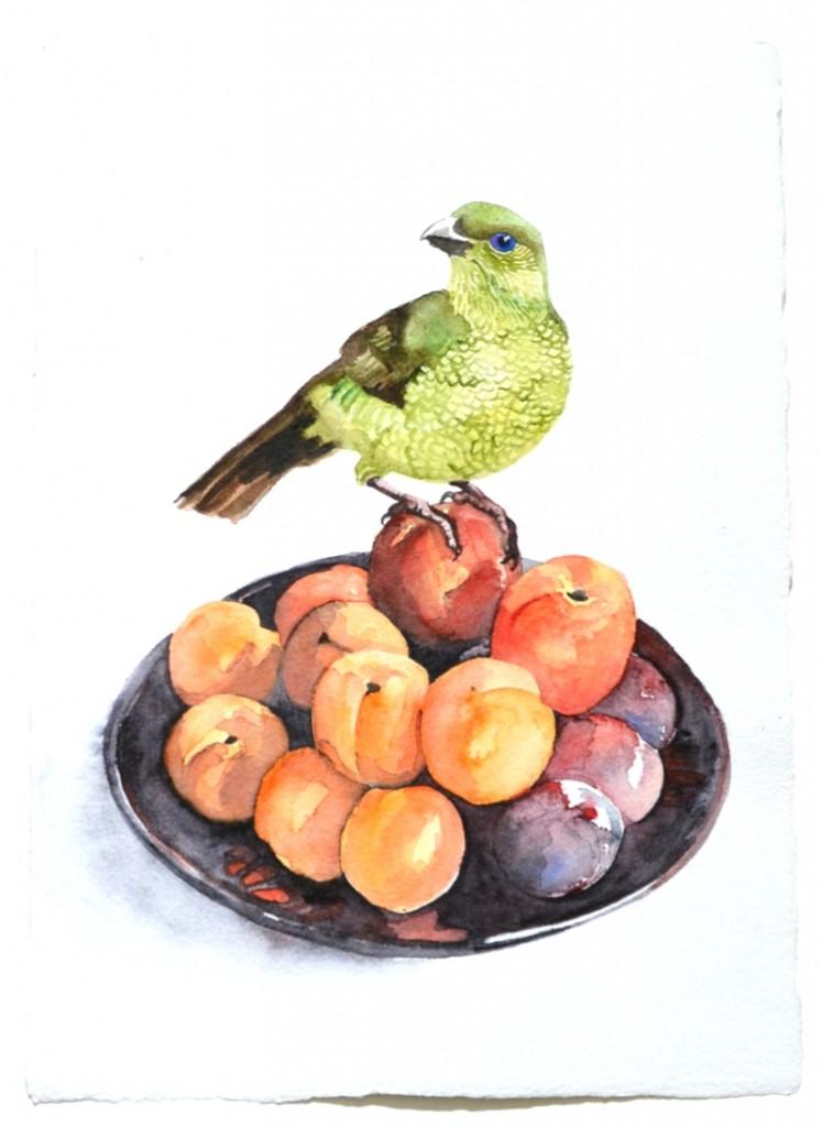 FruitPickerEditSmall